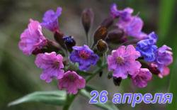 Фомаида 26 апреля