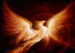 Рарог – огненный сокол