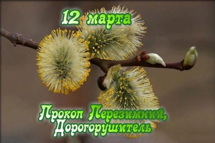 12 марта – приметы, обряды, традиции в день Прокопа Перезимника