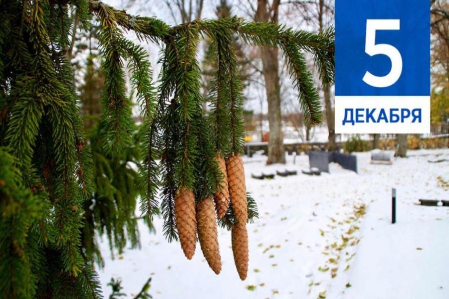 5 декабря – приметы, традиции, заговоры в день Прокопия