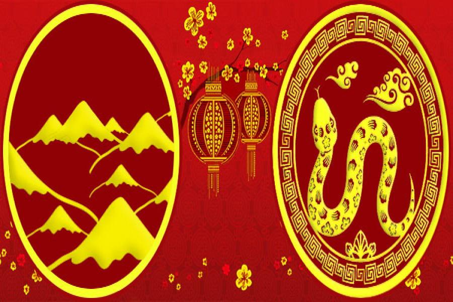 1989 год: характеристика земляной Змеи, совместимость с другими знаками