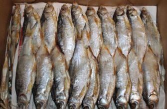К чему снится сушеная рыба: мнение сонников