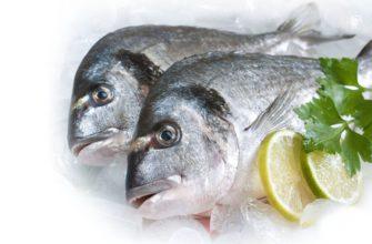К чему снится замороженная рыба — подробное толкование сновидения