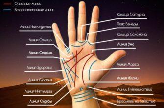 Как определить продолжительность жизни по линиям на руке