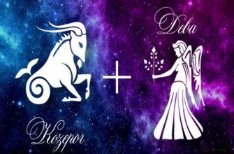 Козерог и Дева: совместимость в любви, браке, дружбе и работе