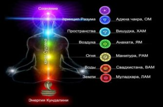 Семь основных чакр человека: их расположение, цвета, значение и открытие