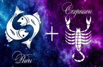 Скорпион и Рыбы: совместимость в любовных, семейных, дружеских и рабочих отношениях