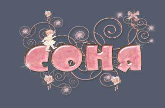 Соня: полная характеристика и тайна имени